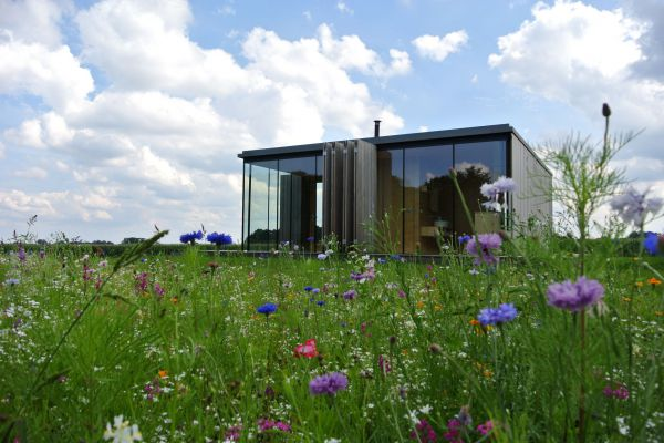De leukste tiny houses in Nederland
